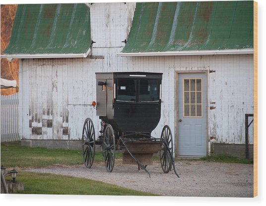 Amish Buggy White Barn Wood Print