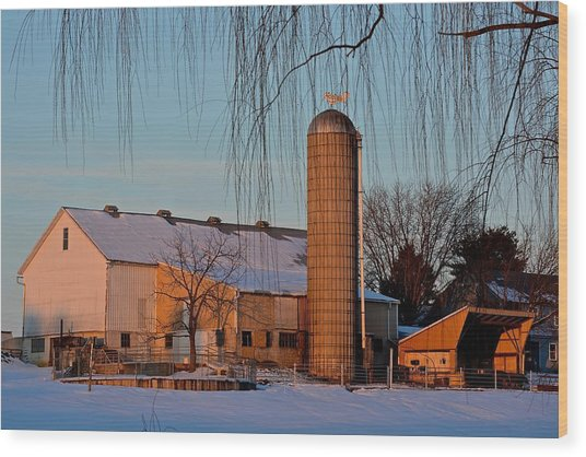 Amish Farm At Turquoise Dusk Wood Print