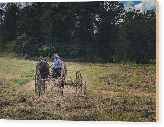 Amish Farming Wood Print