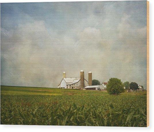 Amish Farmland Wood Print