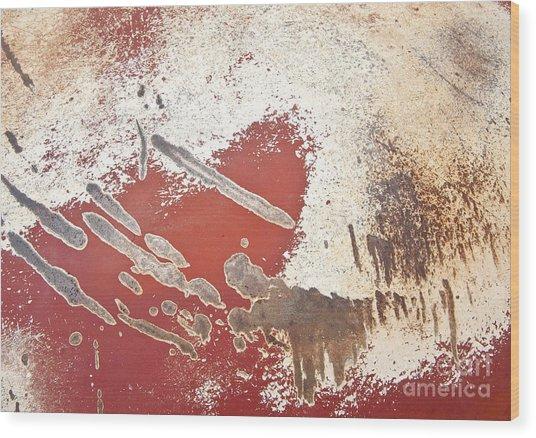 Amoeba  Amoebae Abstract Wood Print