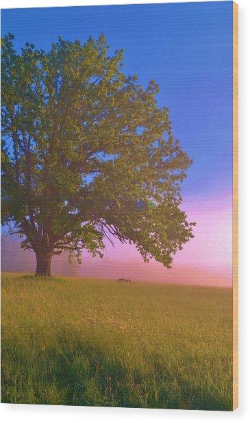 An All-american Sunrise Wood Print