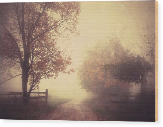 An Autumn Day Forever Wood Print