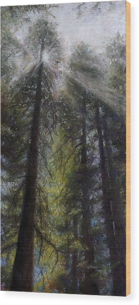 An Enchanted Forest Wood Print by Mary Giacomini