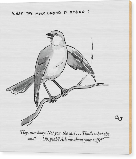 An Incendiary Mockingbird Is Depicted Wood Print