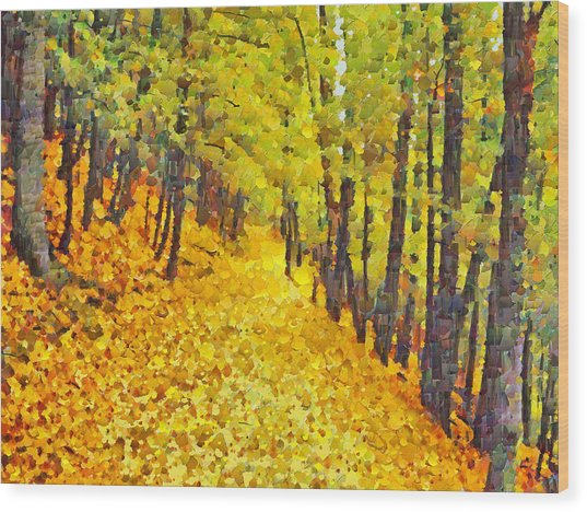 An October Walk In The Woods. 2 Wood Print