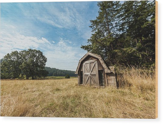 An Old Abandoned Cabin On Cabbage Wood Print