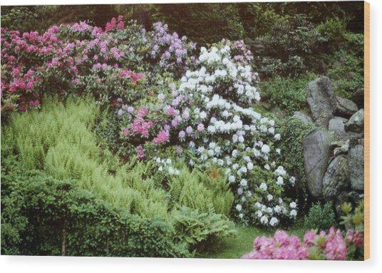An Olmstead Garden Wood Print