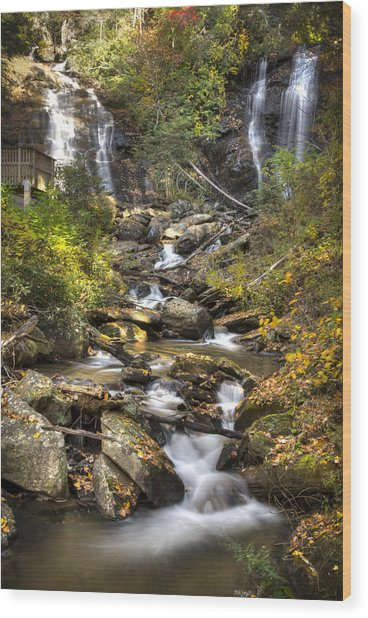 Ana Ruby Falls In Autumn Wood Print