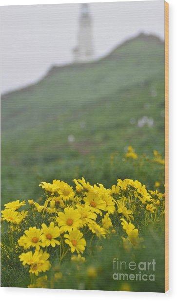 Anacapa Spring Wood Print