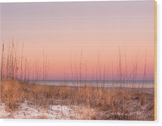 Anastasia Beach Dunes Sunset Wood Print