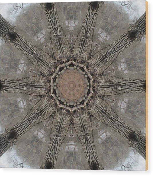 Ancient Cottonwood Wood Print