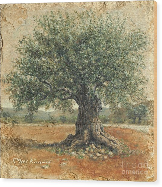 Ancient Olive Tree Wood Print