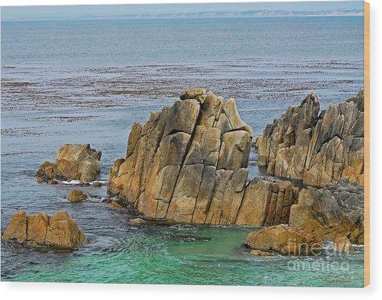 Ancient Rocks At Pacific Grove Wood Print