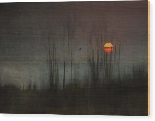 ...and The Moon Stood Still For The Night Bird's Song... Wood Print
