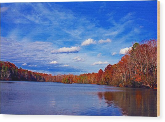 Andrew State Park Lake Wood Print