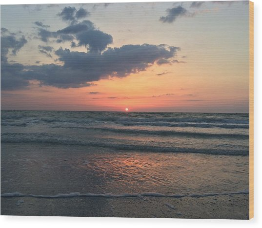 Angel Dolphin Sunset Wood Print