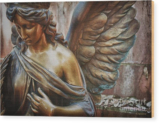 Angelic Contemplation Wood Print