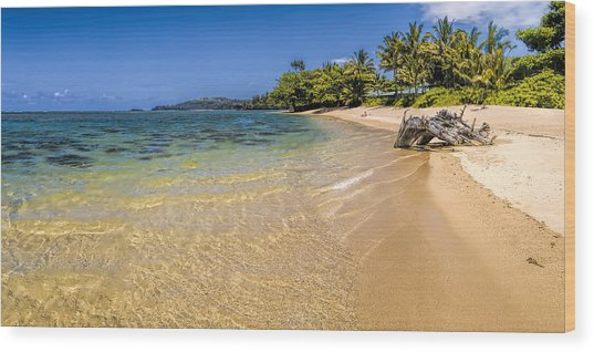 Anini Beach 1 Wood Print