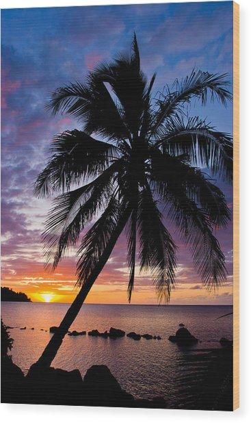 Anini Palm Wood Print