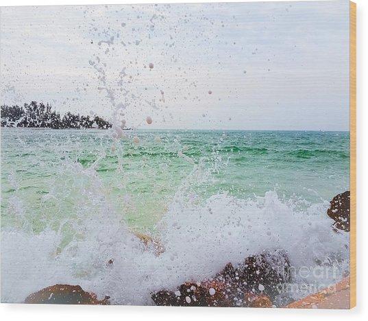 Anna Maria Island Wood Print