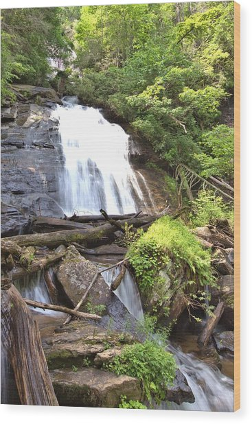 Anna Ruby Falls - Georgia - 4 Wood Print