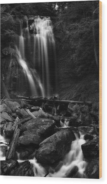 Anna Ruby Falls Right Side Wood Print
