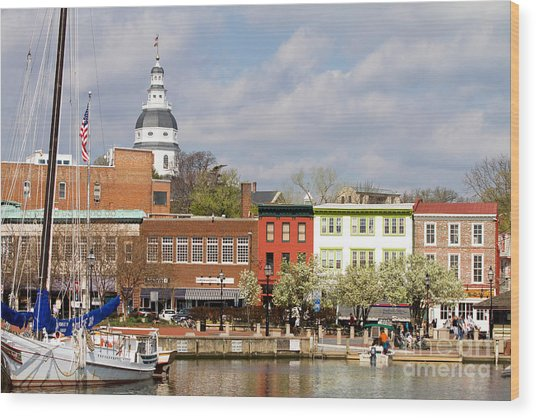 Annapolis Downtown Harbor Wood Print