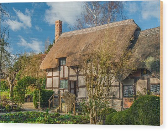 Anne Hathaways Cottage Wood Print by David Ross