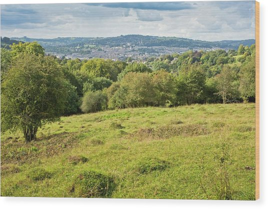 Ant Hill Meadow Wood Print