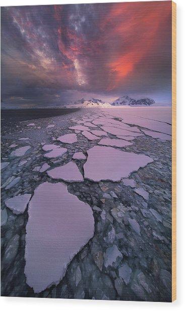 Antarctica Fire Wood Print