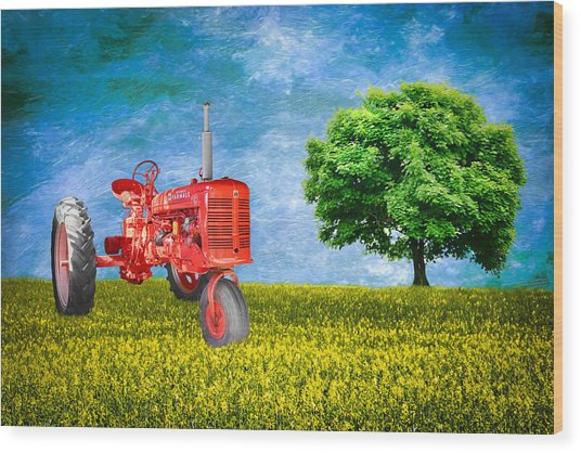 Antique Farmall Tractor Wood Print