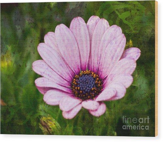 Antique Flower Wood Print by Lutz Baar