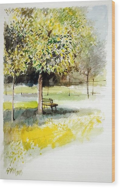 Autumn Shadows Wood Print by Lorand Sipos