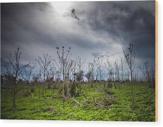 Apocalyptic Landscape Wood Print