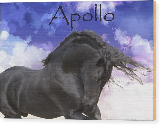 Apollo The Great Wood Print