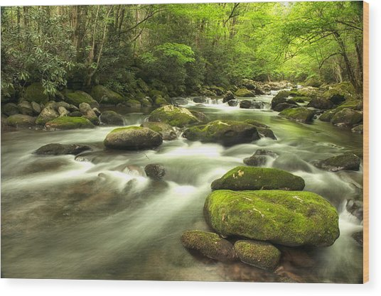 Appalachian Spring Stream Wood Print