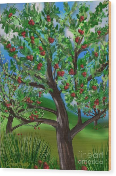 Apple Acres Wood Print