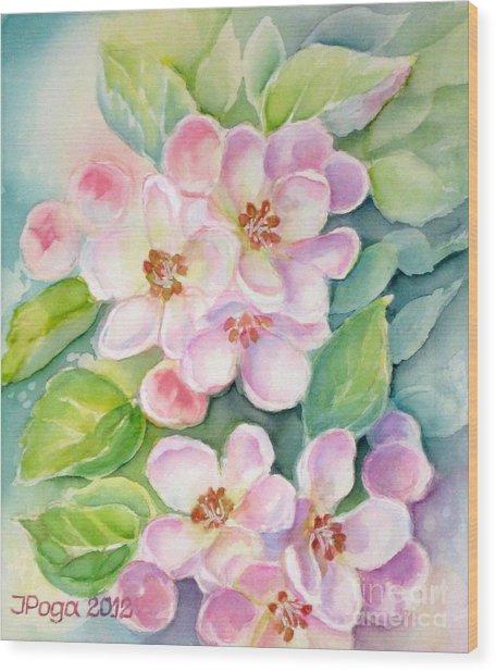 Apple Blossoms 1 Wood Print