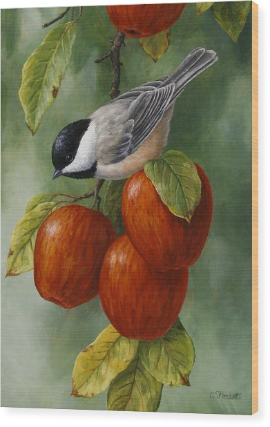 Apple Chickadee Greeting Card 3 Wood Print
