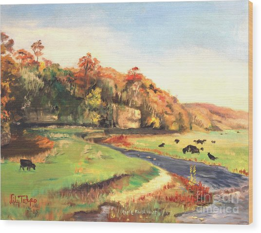 Apple River Valley Il. Autumn Wood Print