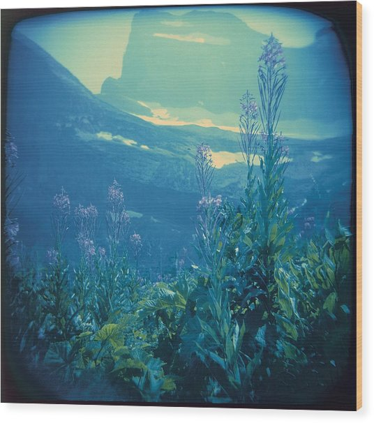 Aquarium Mountain Wood Print