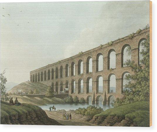 Aqueduct Near Belgrade, Serbia, Plate 6 Wood Print