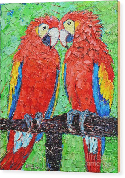 Ara Love A Moment Of Tenderness Between Two Scarlet Macaw Parrots Wood Print