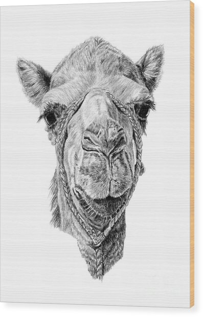 Arabian Beauty Wood Print