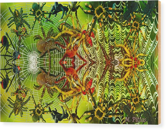 Aracknid Harmony Wood Print