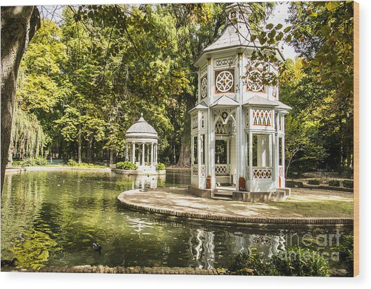 Aranjuez Park Lake Wood Print