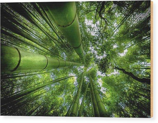 Arashiyama Wood Print