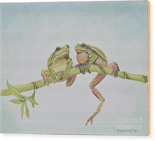 Arboreal Frogs In Pastel Wood Print