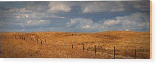 Arbuckle Fence Line Wood Print